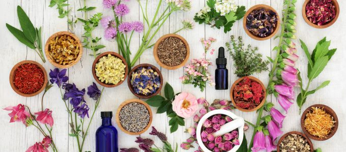Szépségápolásban használt olajok a test -és arcbőr ápolásához. Tudd meg hogy milyen előnyökkel járhat ezeknek a kozmetikai termékeknek a használata!